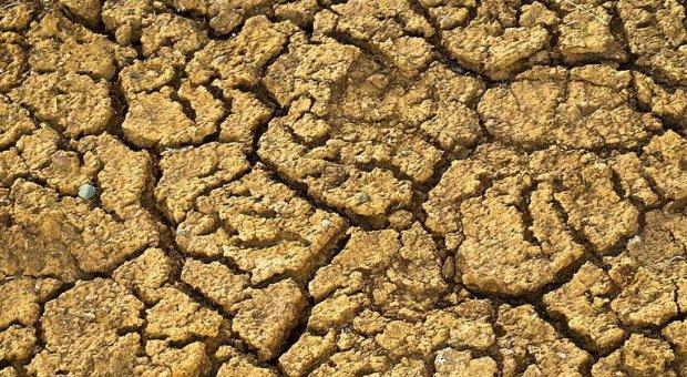 PSOE denuncia el anuncio de las medidas contra la sequía en Castilla La Mancha sin presupuesto