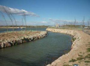 Xúquer Viu pide una reducción de las extracciones de la Mancha Oriental