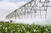 El uso de agua para regadío disminuyó un 11,1% en Castilla-La Mancha en 2008 respecto al año anterior