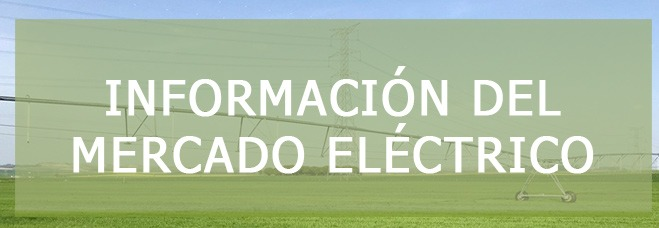 informacion mercado electrico
